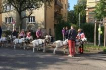 Volksfestumzug_2017_05
